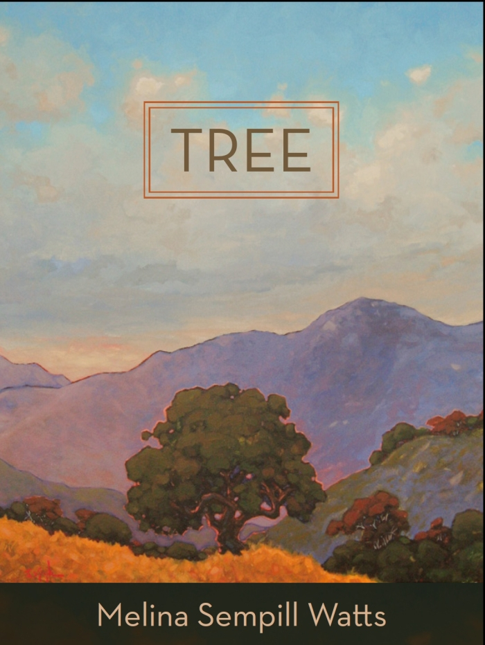 photo_of_cover_of_tree